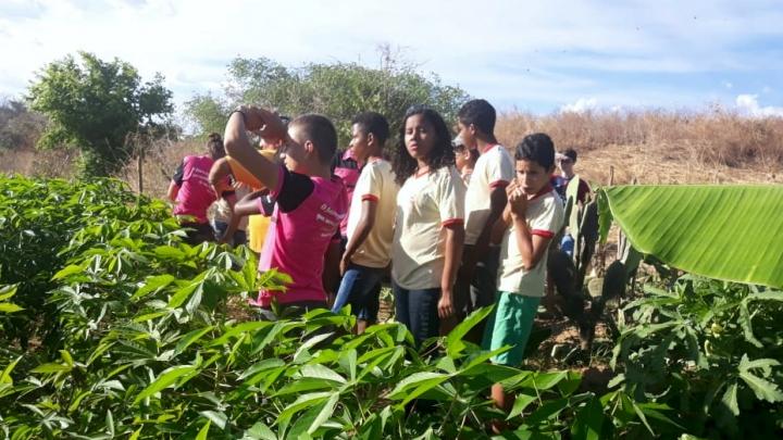Alunos da zona rural participam de ação educativa sobre produção agroecológica